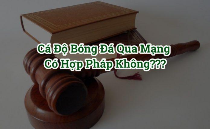 Luật cá độ bóng đá qua mạng hợp pháp ở Việt Nam 2020 [NEW]